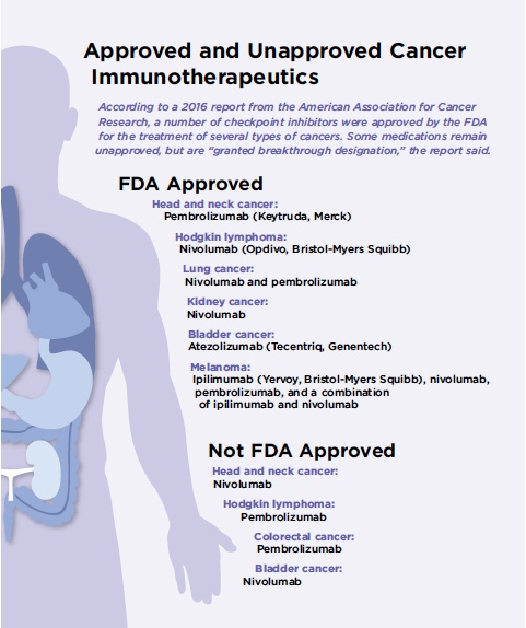 Reliance On Immunotherapy Agents Increases As Does