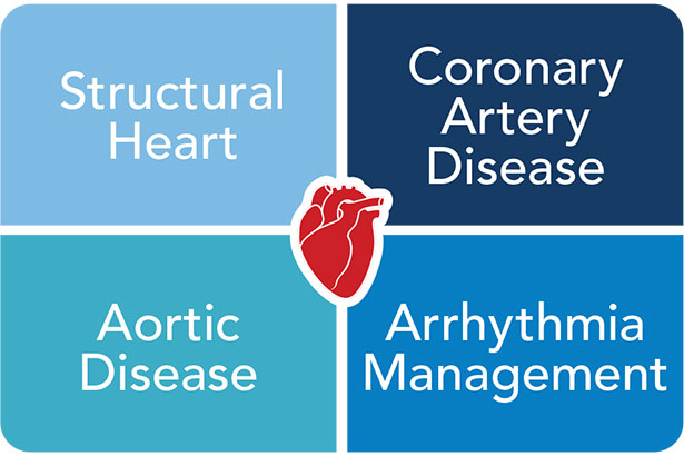 Heart and Vascular Institute centers of excellence