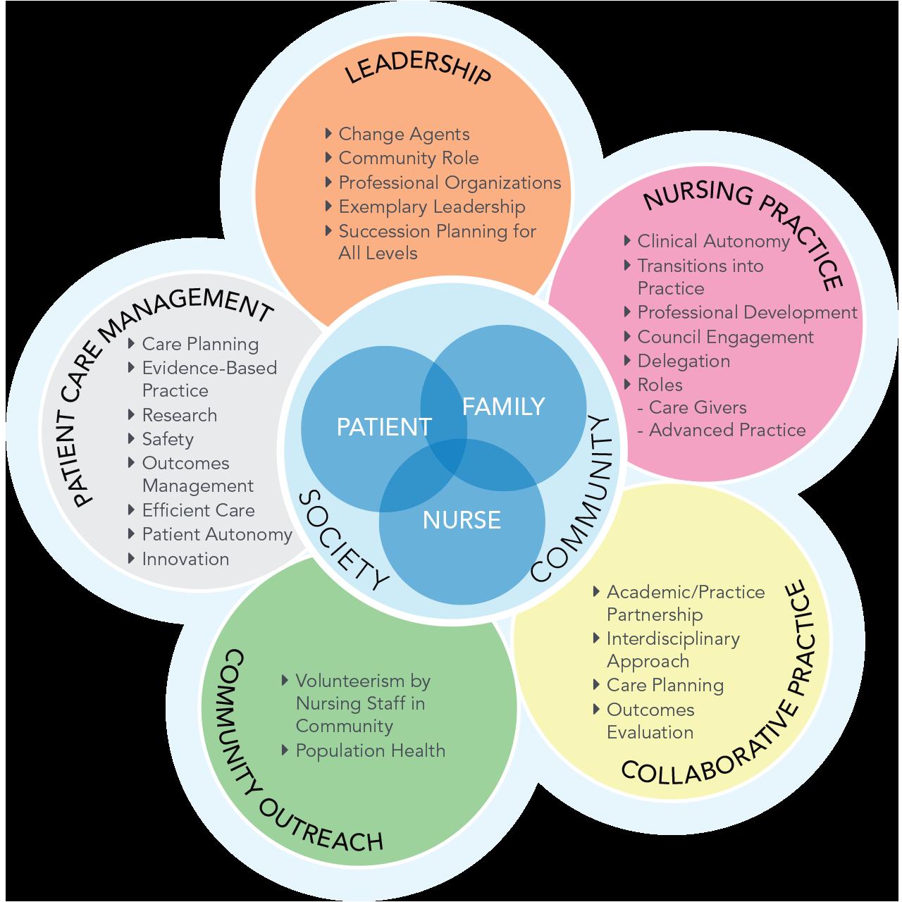 Nursing professional practice model
